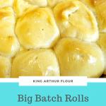 King Arthur Flour Big Batch Rolls