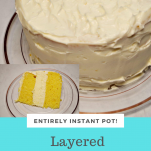 Instant Pot Layered Cheese Cake